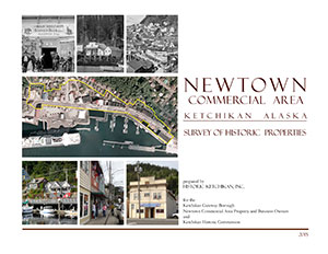 Newtown Survey